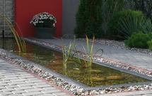 Gdzie magazynować deszczówkę - w zbiorniku, stawie czy w oczku wodnym?