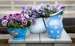 Kwiaty w domu - co zamiast doniczki? Efektowne pomysły na kwiatową dekorację