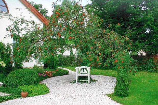 Ścieżka w ogrodzie. Poradnik, jak wybrać kostkę brukową na ścieżki w ogrodzie